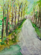 """""""North Woods in Spring 2"""""""