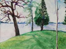 """The Swimming Hill, Fowler Lake"""